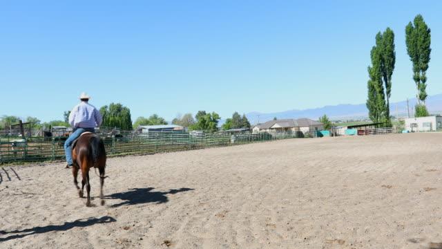 cowboy on horseback - recreational horseback riding stock videos & royalty-free footage