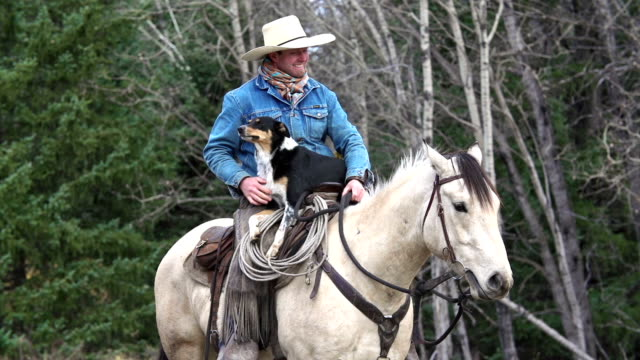 cowboy on horseback with his cattle dog - west direction stock videos & royalty-free footage