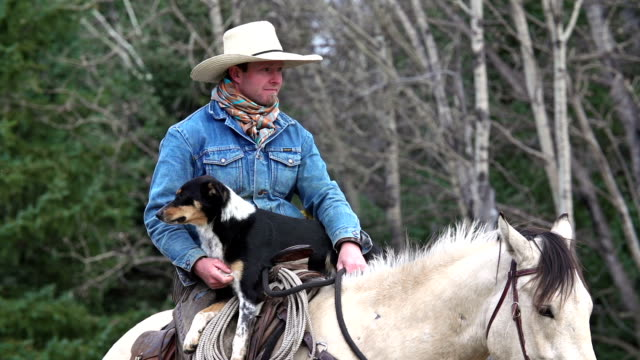 Cowboy on horseback with his cattle dog