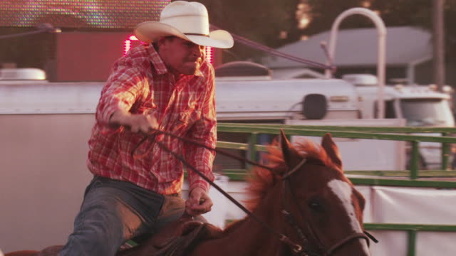 cowboy races out the gate and attempts to bring down a steer by the horns at a rodeo - shot in slow motion sun flares. - 1 minute or greater stock videos & royalty-free footage