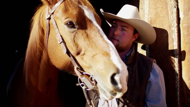 cowboy ranch hand with horse dude ranch usa - bonding stock videos & royalty-free footage