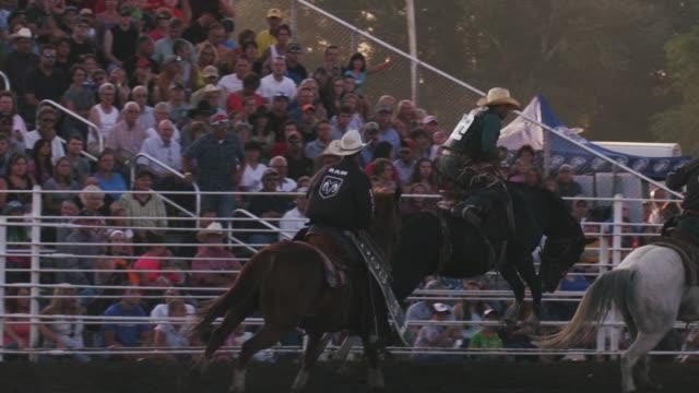 vídeos y material grabado en eventos de stock de cowboy rides a bucking bronco at a rodeo, brought to a stop by mounted assistants - shot in slow motion. - animales de trabajo