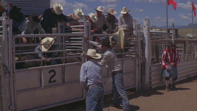 a cowboy rides a bull at a rodeo. - 1 minute or greater stock videos & royalty-free footage