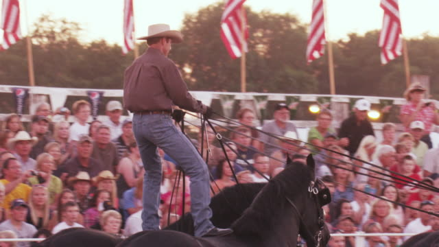 a cowboy rides a team of six black horses around a rodeo ring - slow motion. - 1 minute or greater stock videos & royalty-free footage