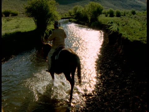 cowboy rides horse across stream, montana - recreational pursuit stock videos & royalty-free footage