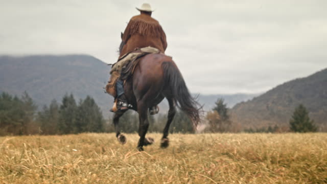slo mo cowboy riding a galloping horse in the mountains - horseback riding stock videos & royalty-free footage