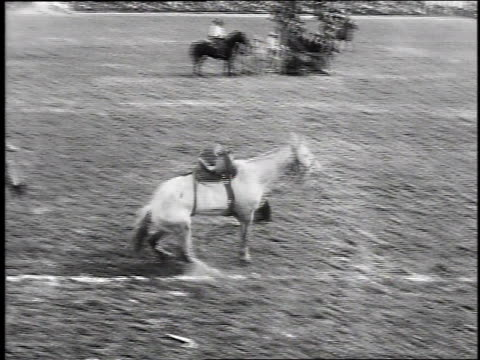 1930 ws cowboy riding bucking horse then falling off / burbank, california, usa - bucking stock videos & royalty-free footage