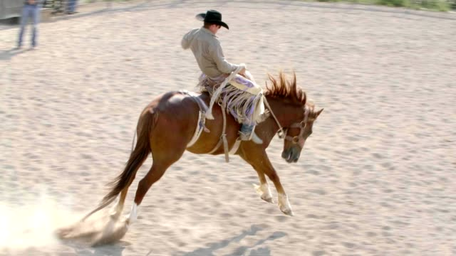 cowboy riding bucking horse - rodeo stock videos & royalty-free footage