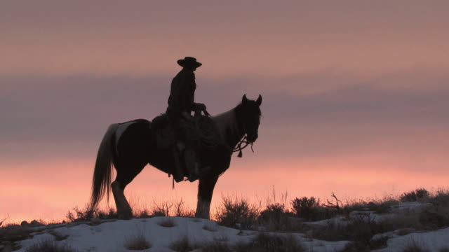 MS Cowboy riding horse at sunset / Shell, Wyoming, United States