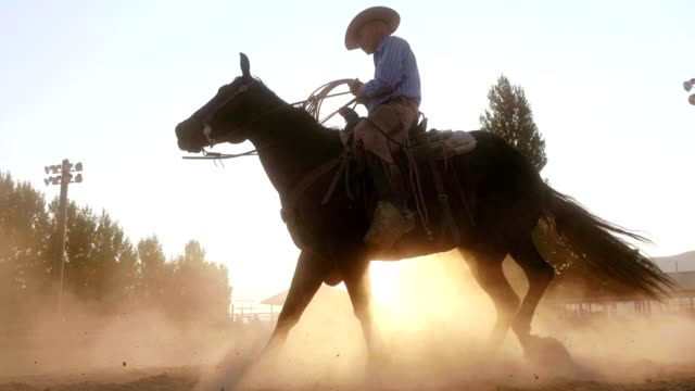cowboy riding horse at sunset - horseback riding stock videos & royalty-free footage