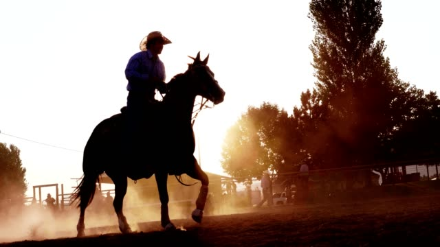 cowboy riding horse at sunset - wild west stock videos & royalty-free footage