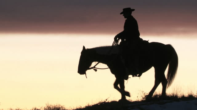 WS Cowboy riding horse on ridge silhouetted against the sunset / Shell, Wyoming, United States