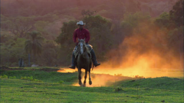 ws cowboy riding horse toward camera, kicking up dust along the way/ rio verde farm, brazil - cowboy stock videos & royalty-free footage