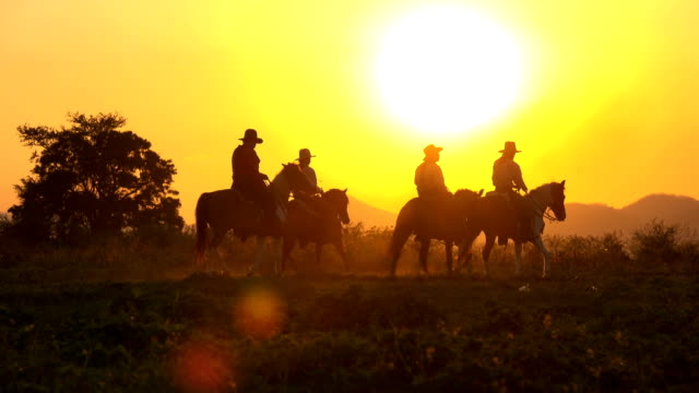 4K Cowboy Riding Horse Walking In The Meadow Field At Sunset