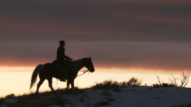 WS Cowboy riding on horse in silhouette at sunset / Shell, Wyoming, United States