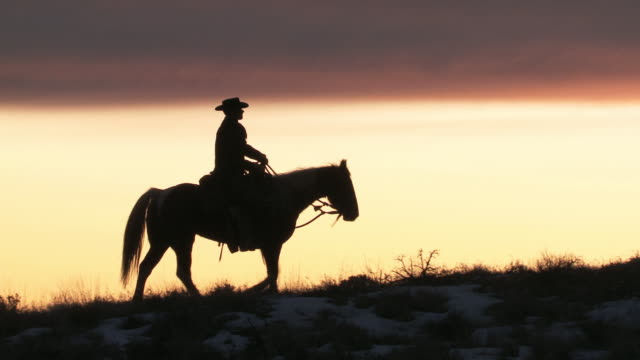ts cowboy riding on horse in silhouette at sunset / shell, wyoming, united states - カウボーイ点の映像素材/bロール