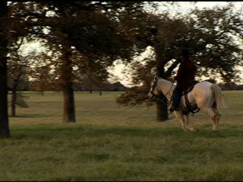 cowboy riding through sunset on white horse - galoppera bildbanksvideor och videomaterial från bakom kulisserna