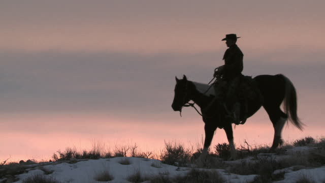 WS Cowboy sitting on a horse in silhouette against the sunset / Shell, Wyoming, United States