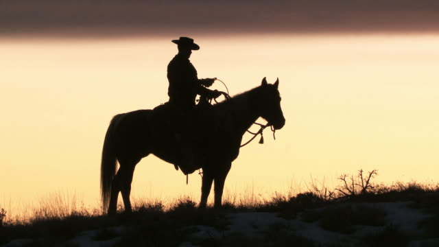 MS Cowboy sitting on horse with his lasso in silhouette at sunset / Shell, Wyoming, United States