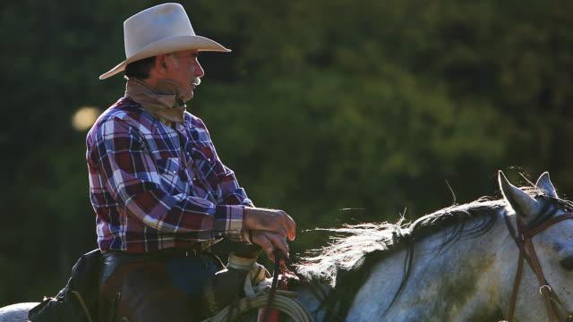 Cowboy sentado no Cavalo com vento Soprar