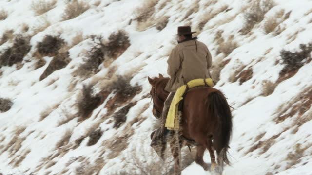vídeos y material grabado en eventos de stock de ts cowboy trotting on horseback along snowy hillside with dog / shell, wyoming, united states - galopar