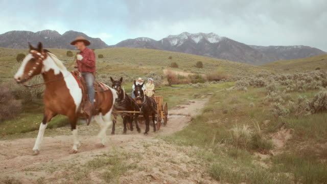 cowboy wagon on the prairie - cart stock videos & royalty-free footage