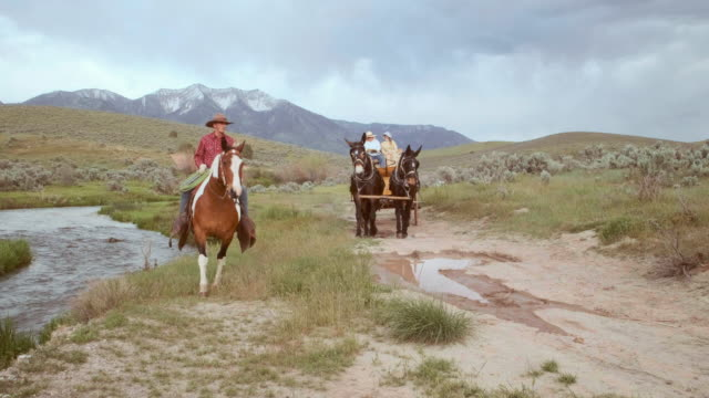cowboy wagon on the prairie - 19th century stock videos & royalty-free footage