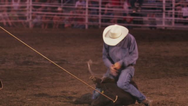 a cowboy with a lariat wraps the feet of a steer, then raises his arms - shot in slow motion. - rope stock videos & royalty-free footage