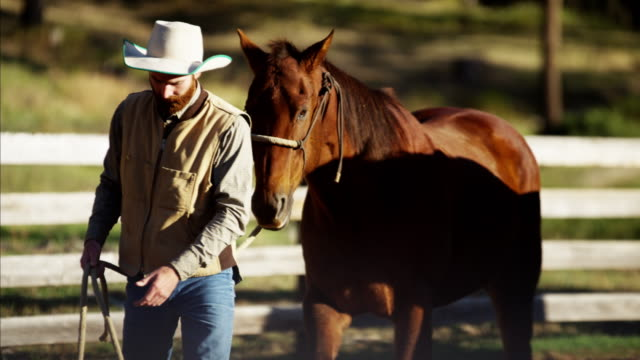 Cowboy with horse in corral Dude Ranch USA