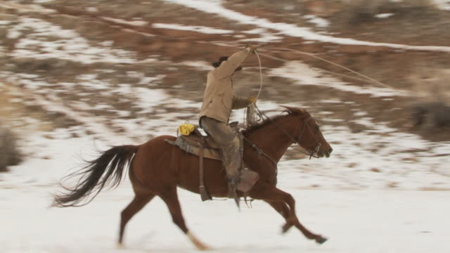 stockvideo's en b-roll-footage met slo mo ws pan cowboy with lasso galloping along in snowy landscape / shell, wyoming, usa - alleen één mid volwassen man