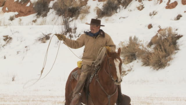 SLO MO MS Cowboy with lasso on horse in snowy landscape / Shell, Wyoming, USA