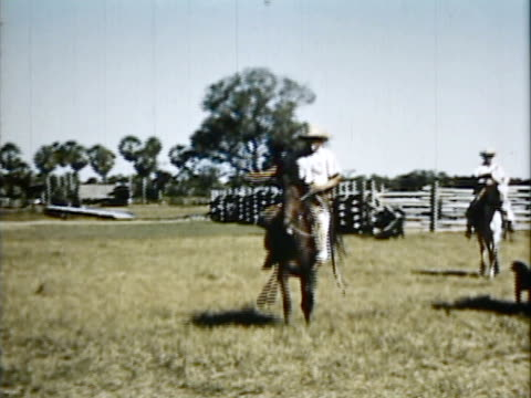 1954 montage cowboys and cattle in ranch / brazil / audio - cattle drive stock videos & royalty-free footage