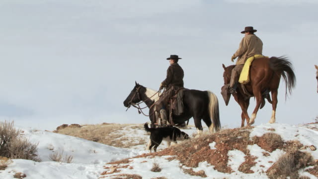 ts cowboys and cowgirl on horseback riding slowly up a snow-covered ridge as a dog is following along / shell, wyoming, united states - fahrzeug fahren stock-videos und b-roll-filmmaterial