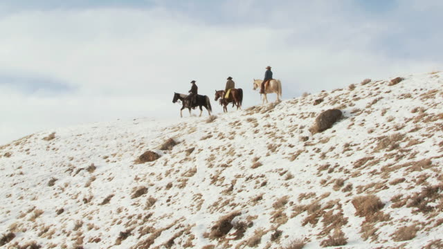 LA Cowboys and cowgirl on horseback walking slowly along snowy ridge as dog is following along / Shell, Wyoming, United States