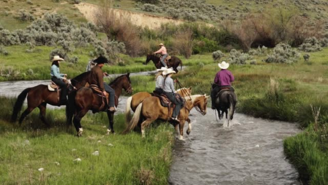 cowboys and cowgirls on a trail ride down to a stream - trail ride stock videos and b-roll footage