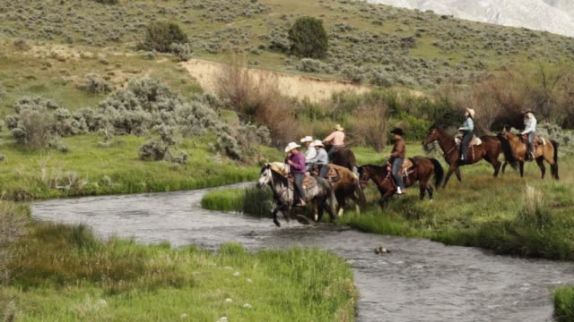 cowboys and cowgirls on a trail ride down to a stream - prairie stock videos & royalty-free footage