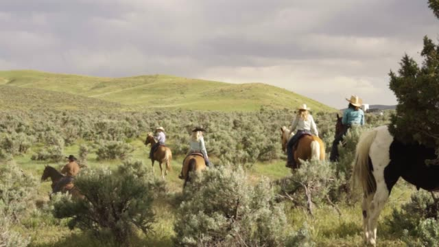 cowboys and cowgirls on a trail ride down to a stream - horseback riding stock videos & royalty-free footage