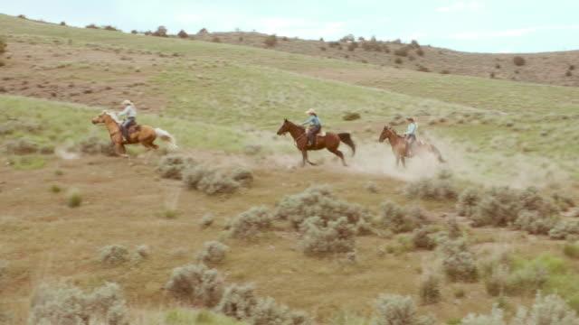 vídeos de stock, filmes e b-roll de cowboys e cowgirls em cavalos - faroeste