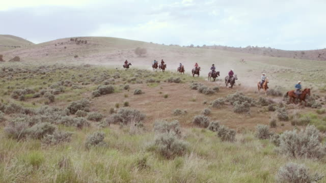 cowboys and cowgirls on horses - cowboy stock videos & royalty-free footage