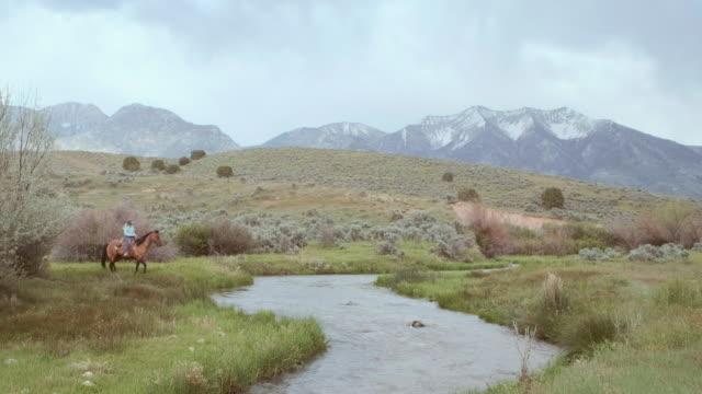 stockvideo's en b-roll-footage met cowboys en cowgirls op paarden - kleine groep dieren