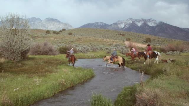 カウボーイとカウガールの馬に - 外乗点の映像素材/bロール