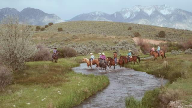 vídeos de stock e filmes b-roll de cowboys and cowgirls on horses - grupo pequeno de animais