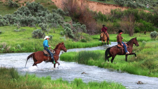 Cowboys and Cowgirls Riding Horses Through River