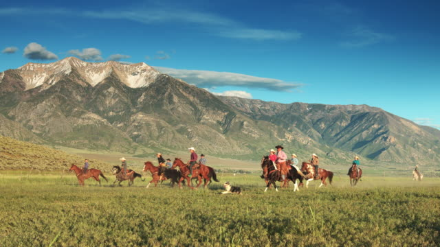 cowboys and cowgirls riding past - recreational horse riding stock videos & royalty-free footage