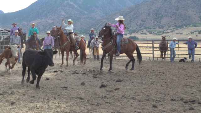 Cowboys competing at a rodeo