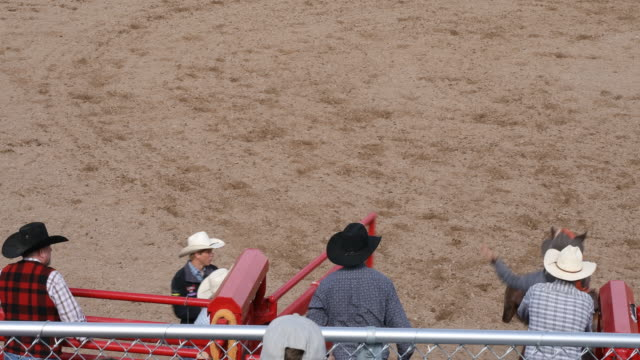 cowboys competing in the bucking bronco event at a rodeo - bucking stock videos & royalty-free footage