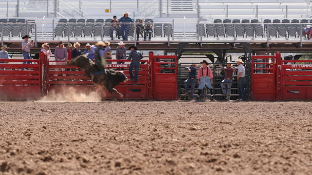 cowboys competing in the bull riding event at a rodeo - bucking bronco stock videos & royalty-free footage
