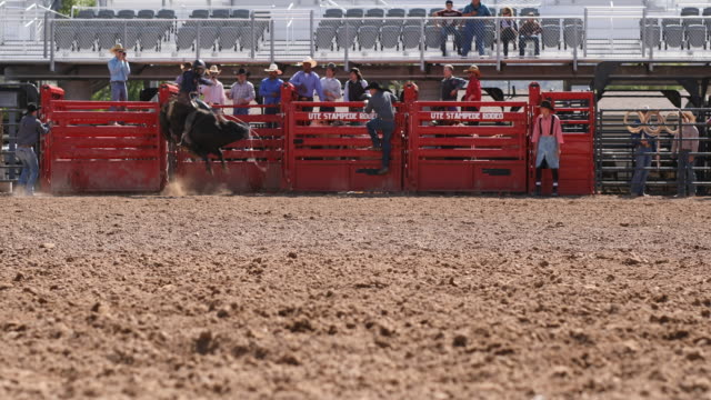 cowboys competing in the bull riding event at a rodeo - rodeo stock videos & royalty-free footage