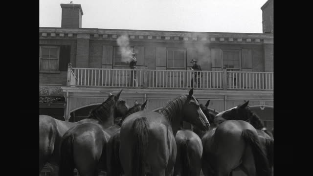 WS Cowboys firing shotguns from balcony with horses in foreground / United States