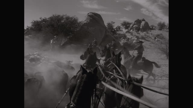 ws pov pan cowboys on horses herding cattle / united states - cattle drive stock videos & royalty-free footage